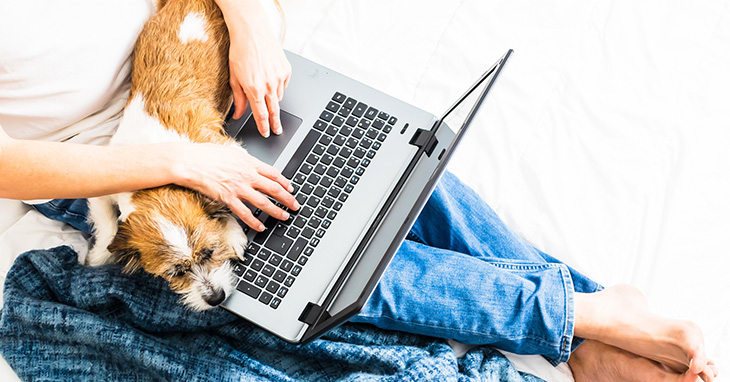 5-ways-your-dog-can-keep-you-on-task-during-remote-work